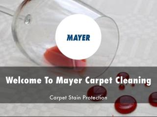 Mayer Carpet Cleaning Presentations.pdf