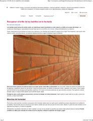 Recuperacion de ladrillos.pdf