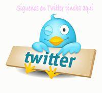 Logo twitter 1024x935 gif